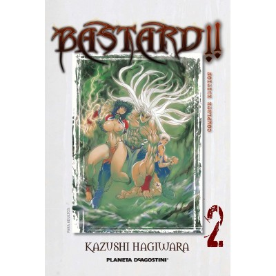 Bastard!! Complete Ed. Nº 02