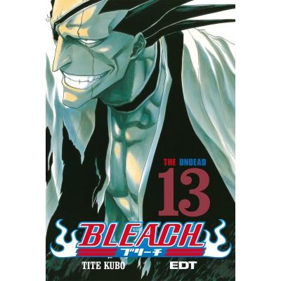 Bleach Nº 13