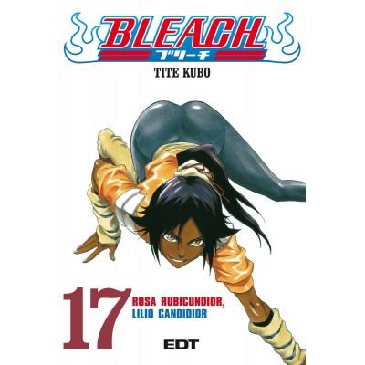 Bleach Nº 17
