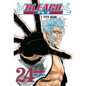 Bleach Nº 24