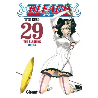Bleach Nº 29