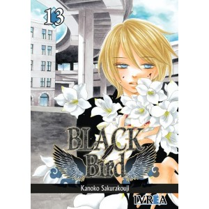 Black Bird Nº 13