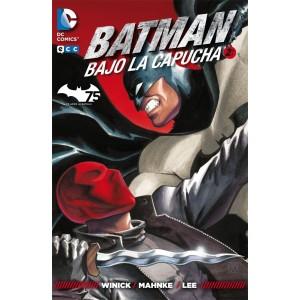 Batman: Bajo la Capucha nº 02