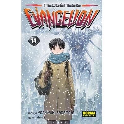 Neon Genesis Evangelion Nº 13