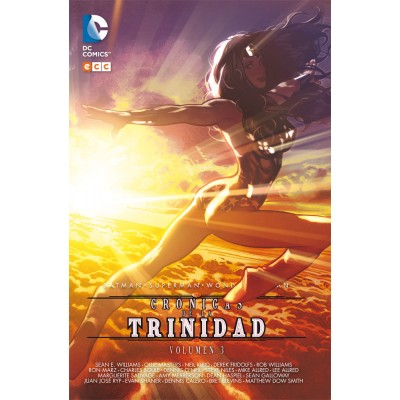 Batman / Superman / Wonder Woman: Crónicas de la Trinidad nº 03