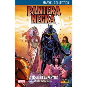 Marvel Collection. Pantera Negra de Hudlin nº 02