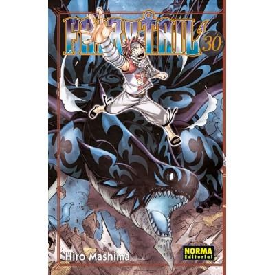 Fairy Tail nº 29