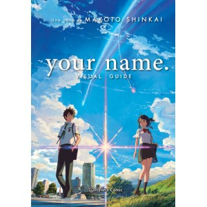 Your Name: Visual Guide