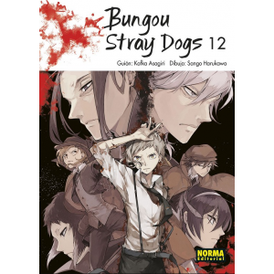 Bungou Stray Dogs nº 12