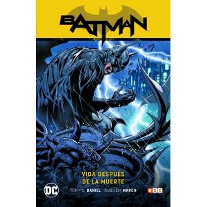 Batman vol. 10: Vida despues de la muerte (Batman Saga - Renacido parte 4) APLAZADO