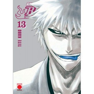 Bleach Maximum nº 13