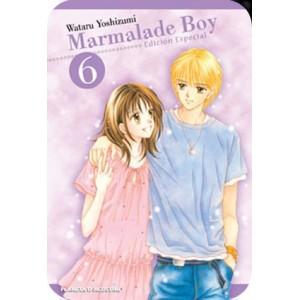 Marmalade Boy Kanzenban Nº 06